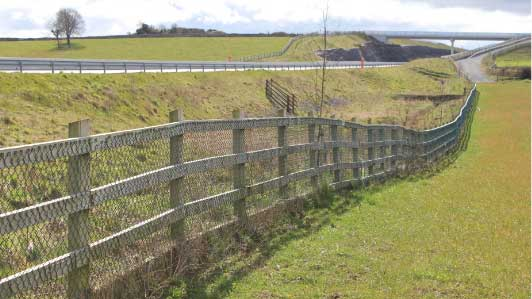 Timber Post & Rail / Strained Wire Fencing