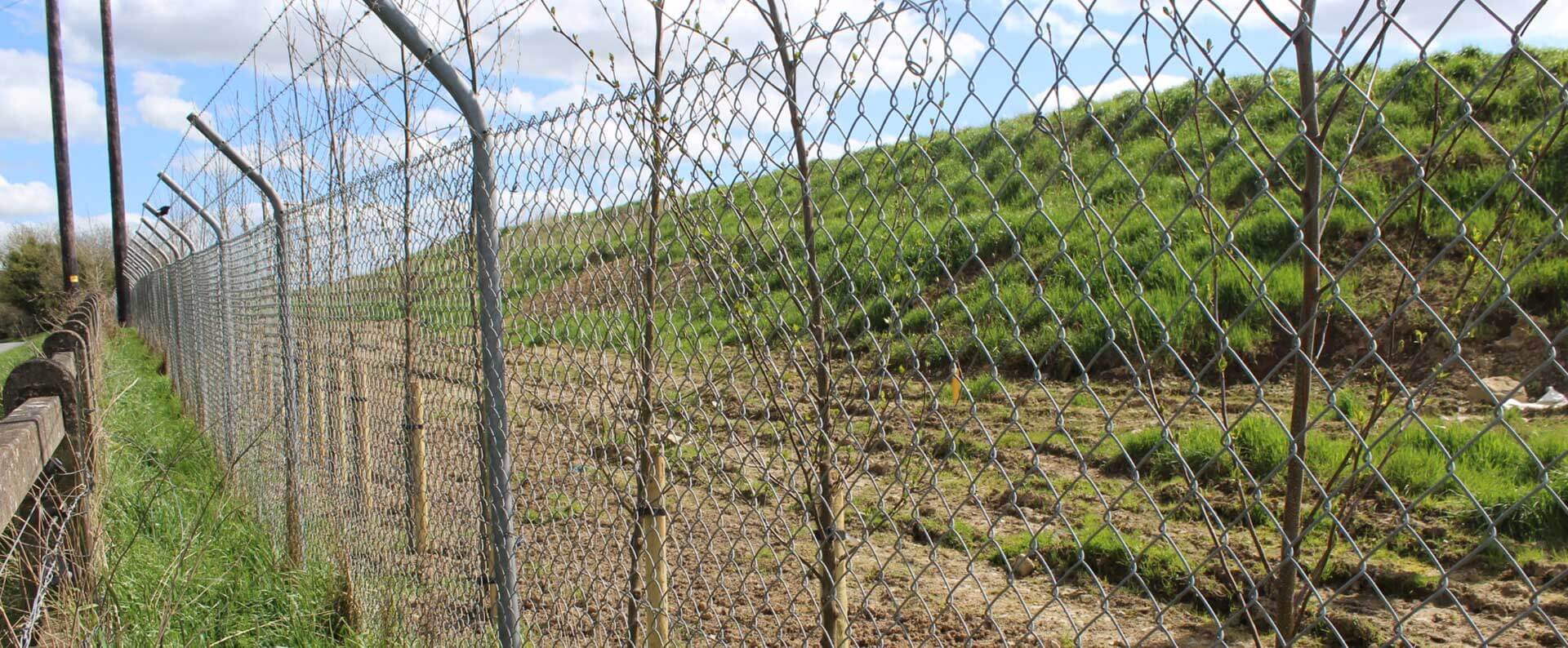 Tara Mines, Meath