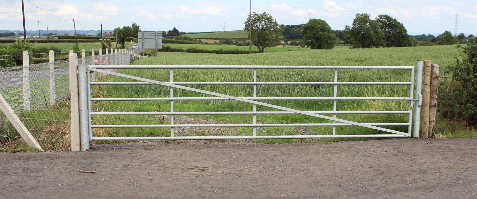 Farm Gates Cattle