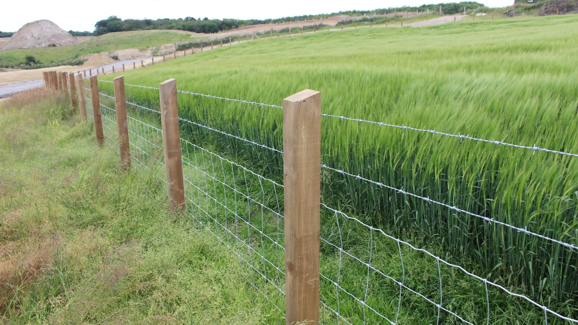 Solar Farm Stock Proof Sheep Fence
